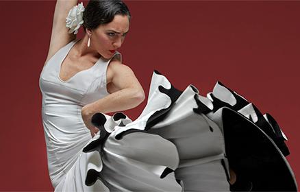 Flamenco Festival Pop Up
